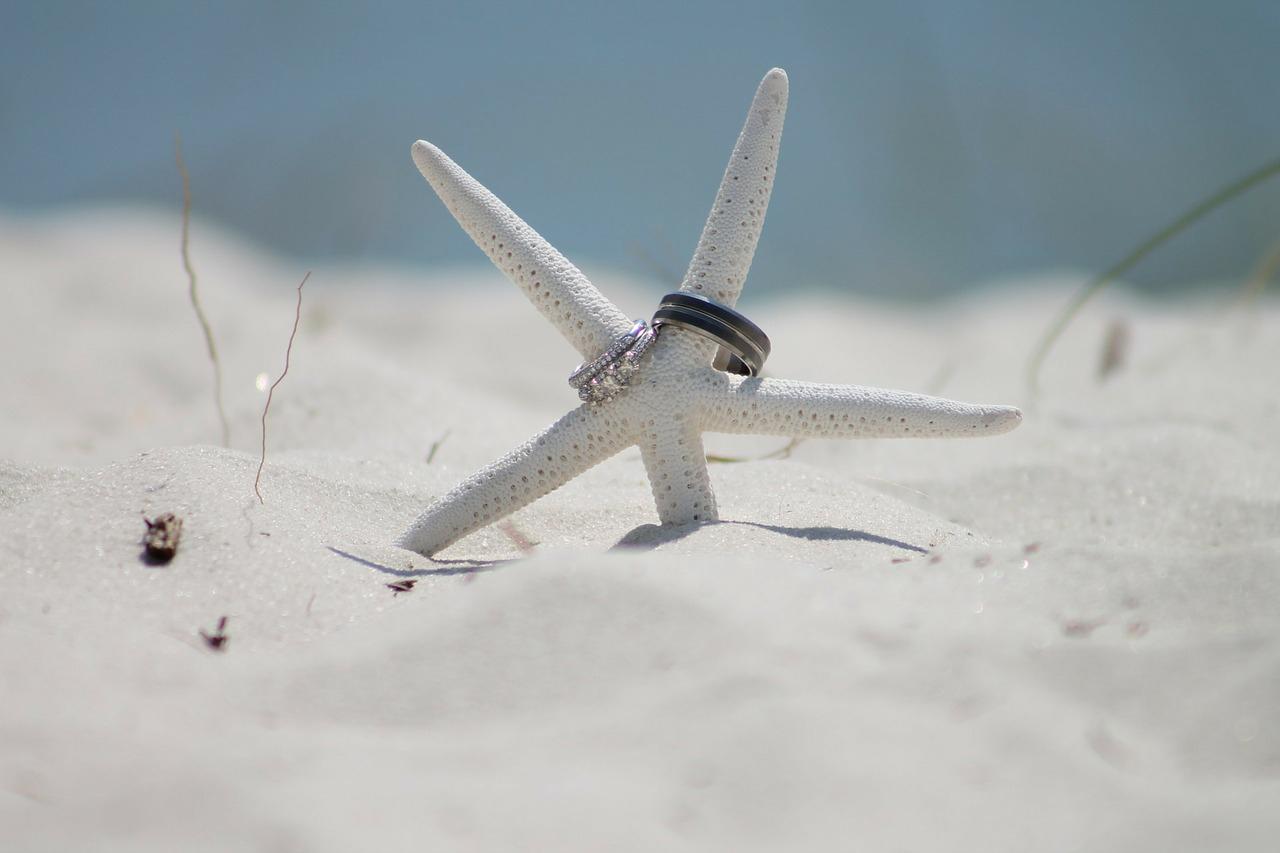 Las estrellas de mar no pueden faltar en una boda surfera.