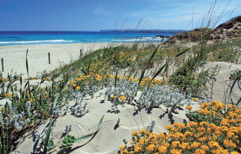 Fotografía de Formentera. Vía Oficina de Turismo de Formentera.